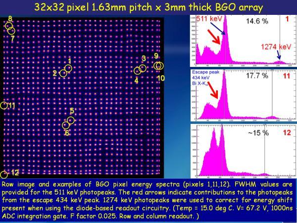 S12642X16 BGO Studies Slide 7